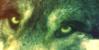 :iconwolfmasterpieces: