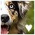 :iconwolfskuss: