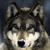 :iconwolfsoul15: