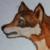 :iconwolfvesz: