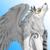 :iconwolfwings19:
