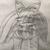 :iconwolfy-tomoshi:
