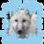 :iconwolvesangelsiren: