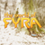 :iconworld-of-fyra:
