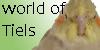 :iconworld-of-tiels: