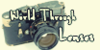 :iconworldthroughlenses: