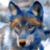 :iconwriter-the-wolf:
