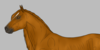 :iconxorilla-horse:
