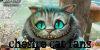 :iconxxchesire-cat-fans: