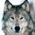 :iconxxwolfgirlxx3: