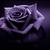 :iconyaoiflowergrl: