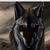 :iconzeroblackfire1: