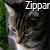 :iconzippar: